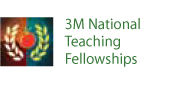 3M National Teaching Fellowships