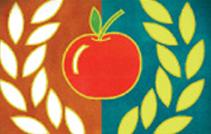 3MNTF logo