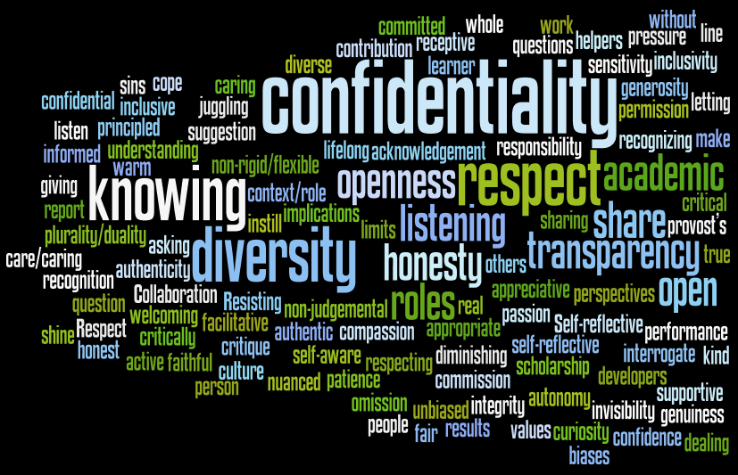 Senior Educational Developers Institute Wordcloud