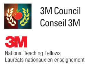 2_3M_Fellows logos