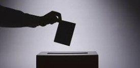 Voting_250